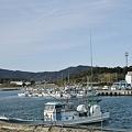 Photos: 赤羽根港