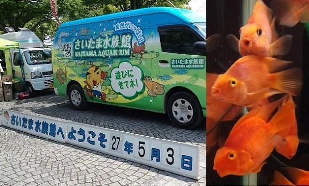 写真: むじなものいるさいたま水族館