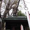 大宮姫命稲荷神社(京都市)