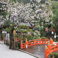 Photos: 15.04.07.賀茂別雷神社(上賀茂神社。京都市北区)
