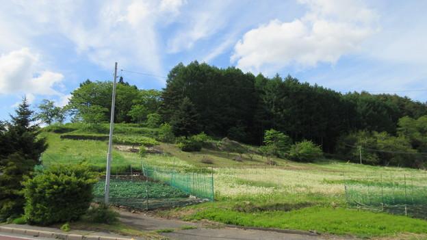 瀬沢合戦場(諏訪郡富士見町)