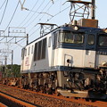 写真: 鹿島貨物(EF64-1026)