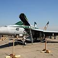Photos: F/A-18E VFA-195 DAMBUSTERS