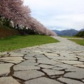 写真: ~石畳を歩いて行こう~