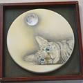 写真: 月見る猫はなに想う