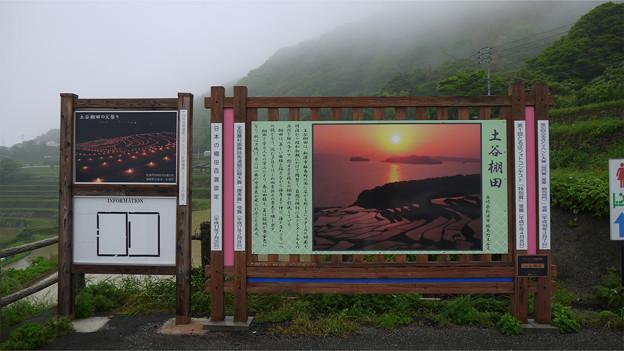 写真: 土谷棚田(3)