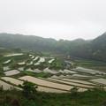 写真: 土谷棚田(2)
