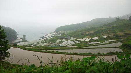 土谷棚田(1)