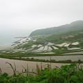 写真: 土谷棚田(1)