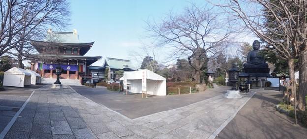 toukyoudaibutu_p1