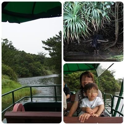 20120604 湖水 観賞舟1