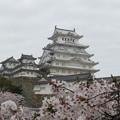 国宝 姫路城(2)