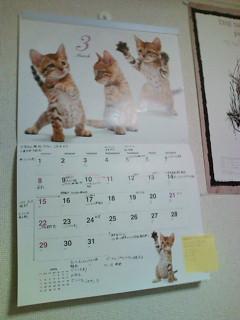 今月のカレンダーです。