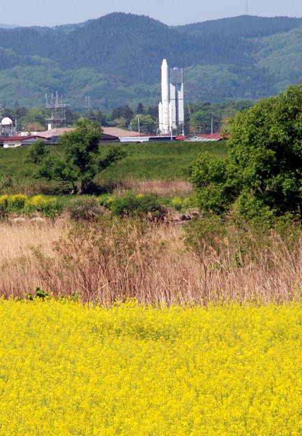 ロケットと菜の花畑