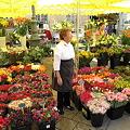 写真: 南プロバンスの花市場~♪♪