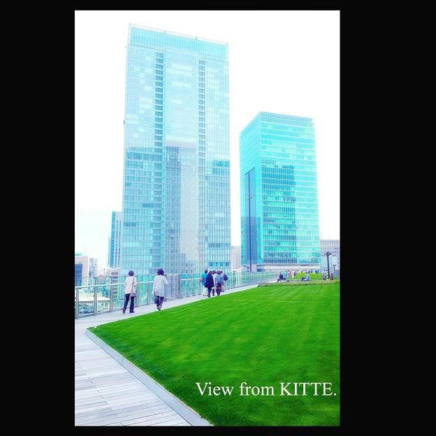 KITTEのグリーン