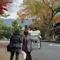 Photos: 秋の奈良市内0001