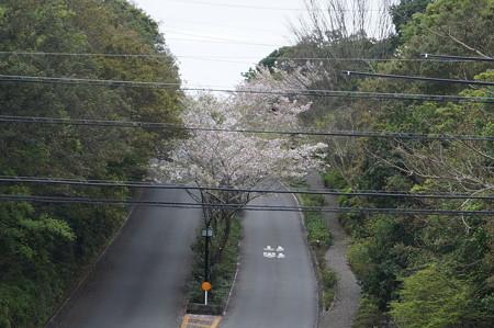 賢島駅の写真0055