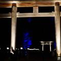 橿原神宮の写真0130