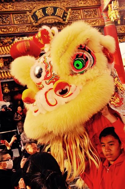中国獅子舞もパレード盛り上げて。。横浜中華街 祝賀パレード。。2月28日