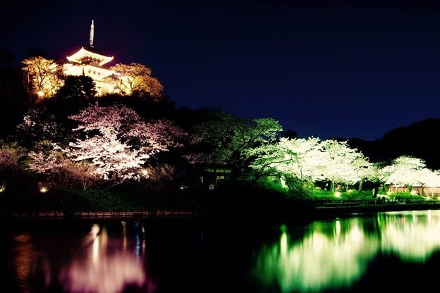 静寂な夜に夜桜と三渓園三重の塔。。3月31日
