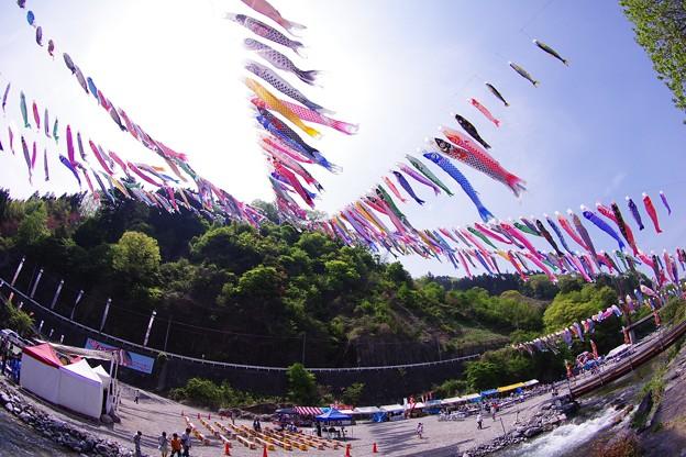 魚眼で見る神流町鯉のぼり祭り。。4月29日