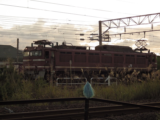 EF81-627