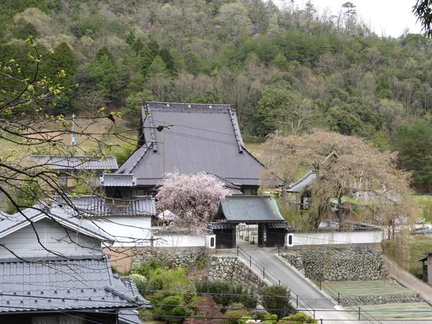 Photos: 光福寺を俯瞰