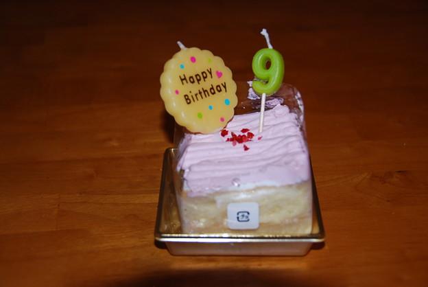写真: プチケーキ