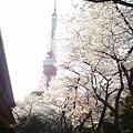 Photos: 2012-東京タワーと桜