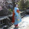祇園白川で舞妓さんの撮影会2