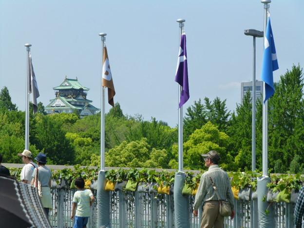 エアトラックからの大阪城@もりのみやキューズモールBASE