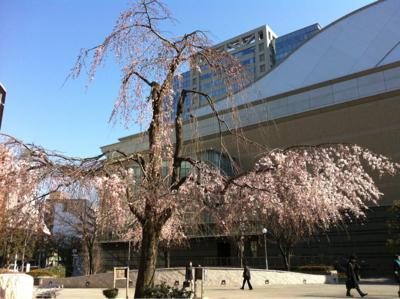 大田区民ホール