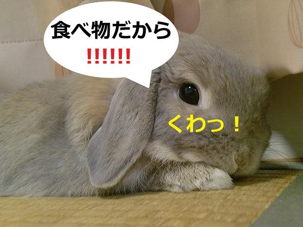 Photos: い7