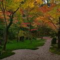 写真: 秋の枯山水♪