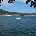 下田港の漁船