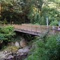 写真: 河津七滝のかに滝橋