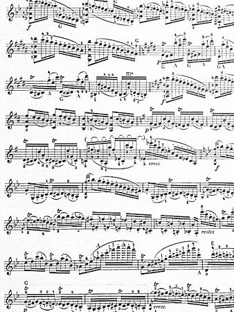 中野・江古田 バイオリン 個人レッスン ヴィオラ 吉瀬弥恵子 ワイズ音楽教室 記憶にございません