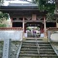 Photos: 四国第38番「金剛福寺」