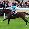 写真: 13.Frankel storms to 11th straight win -The Queen Anne Stakes-