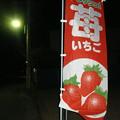 Photos: さん・いちご事件 1928年3月15日