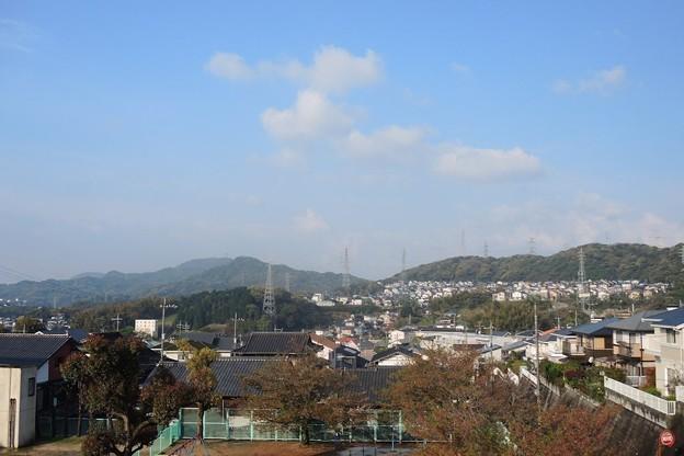 scn_風景